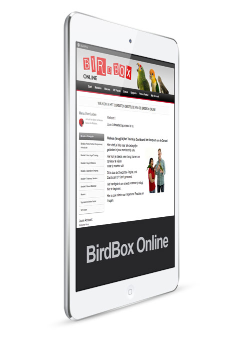 birdox-online-mini-ipad-02